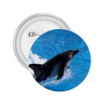 Swimming Dolphin 2.25  Button