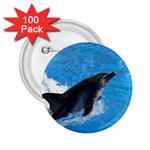 Swimming Dolphin 2.25  Button (100 pack)