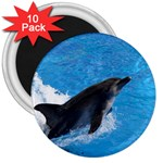 Swimming Dolphin 3  Magnet (10 pack)