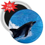 Swimming Dolphin 3  Magnet (100 pack)