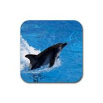 Swimming Dolphin Rubber Coaster (Square)