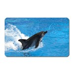 Swimming Dolphin Magnet (Rectangular)