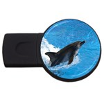 Swimming Dolphin USB Flash Drive Round (2 GB)