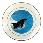 Swimming Dolphin Porcelain Plate