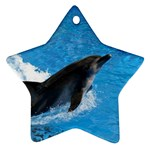 Swimming Dolphin Star Ornament (Two Sides)