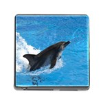 Swimming Dolphin Memory Card Reader with Storage (Square)