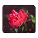 Red flower Large Mousepad