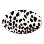 Snow Leopard	 Magnet (Oval)