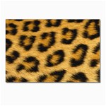 Leopard Print	 Postcards 5  x 7  (Pkg of 10)