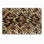 Snake Print	 Postcards 5  x 7  (Pkg of 10)