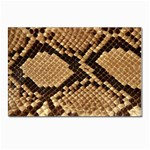 Snake Print Big	 Postcards 5  x 7  (Pkg of 10)