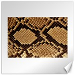 Snake Print Big	Canvas 12  x 12