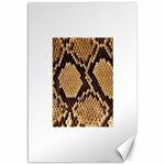 Snake Print Big	Canvas 12  x 18