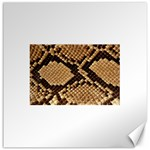 Snake Print Big	Canvas 16  x 16