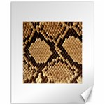 Snake Print Big	Canvas 11  x 14
