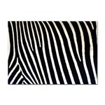 Zebra Print	 Sticker A4 (10 pack)