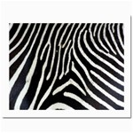 Zebra Print Big	Prints 8  x 10
