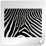 Zebra Print Big	Canvas 20  x 20