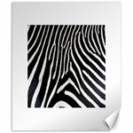 Zebra Print Big	Canvas 20  x 24