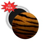 Tiger Print Dark	 2.25  Magnet (10 pack)