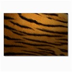Tiger Print Dark	 Postcard 5  x 7