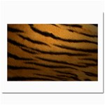Tiger Print Dark	Prints 8  x 10