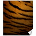 Tiger Print Dark	Canvas 8  x 10