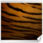 Tiger Print Dark	Canvas 12  x 12