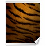 Tiger Print Dark	Canvas 12  x 16