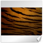 Tiger Print Dark	Canvas 16  x 16