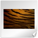 Tiger Print Dark	Canvas 20  x 20