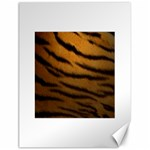 Tiger Print Dark	Canvas 18  x 24