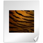 Tiger Print Dark	Canvas 20  x 24